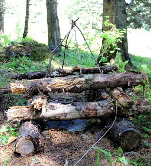 Колодец желаний в таинственном лесу, команда «Всплеск»